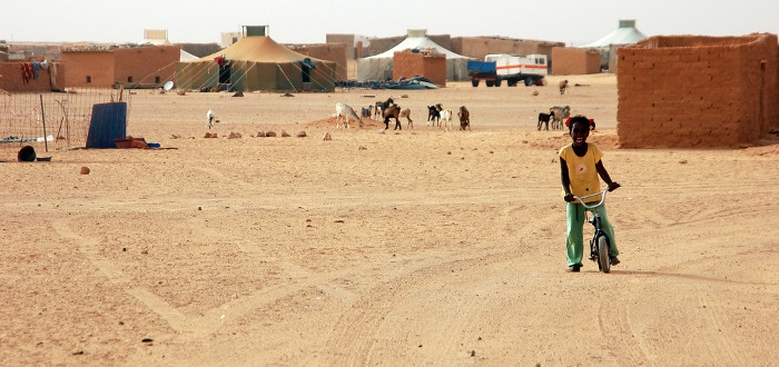 proyecto-saharaui